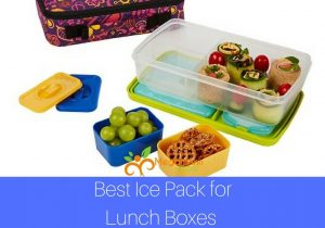 Best Ice Pack for Lunch Boxes