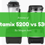 vitamix 5200 vs. 5300