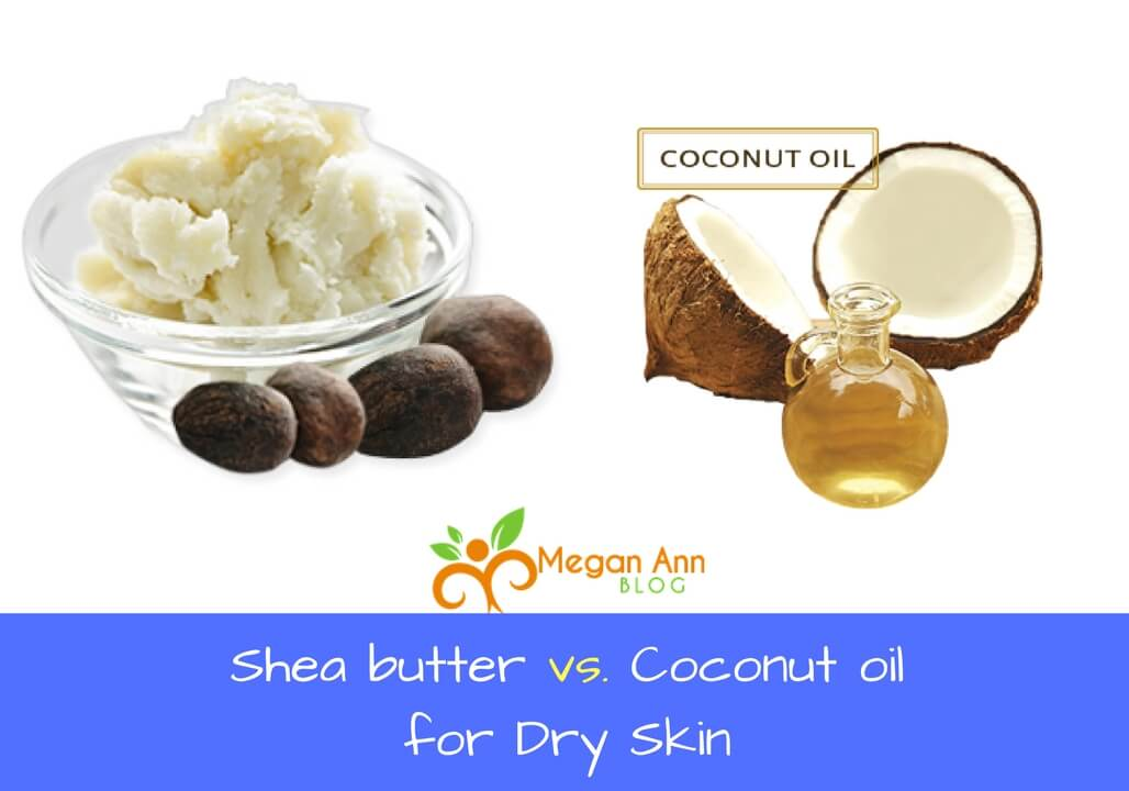 Shea butter vs Coconut oil for Dry Skin megan ann blog