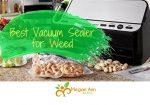 Best Vacuum Sealer for Weed