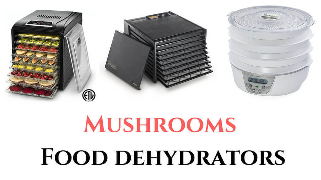 27395511759_51c6523b9a_b best food dehydrator for mushrooms